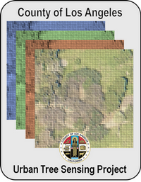 LAC-UCLA Tree Mapping Logo